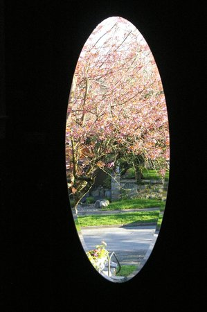 Bee & Thistle Guest House: Cherry trees in bloom through the front door