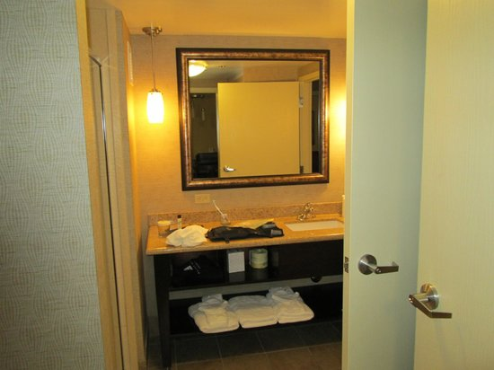Embassy Suites Minneapolis - North: Bathroom