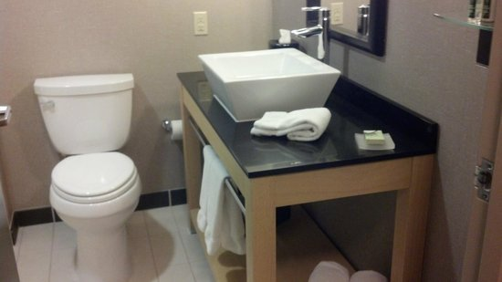 Cambria Suites Maple Grove: Bath