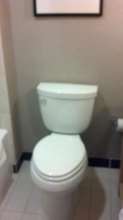 Cambria Suites Maple Grove: Toilet