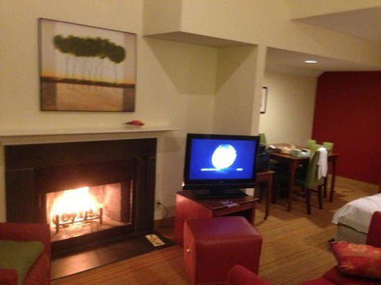 Residence Inn Raleigh: Enjoyed the log fireplace.