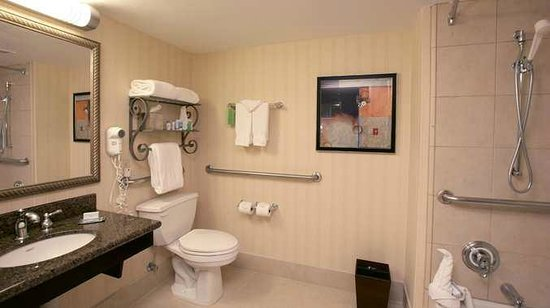 Doubletree by Hilton Dallas Market Center: Hotel Bathroom