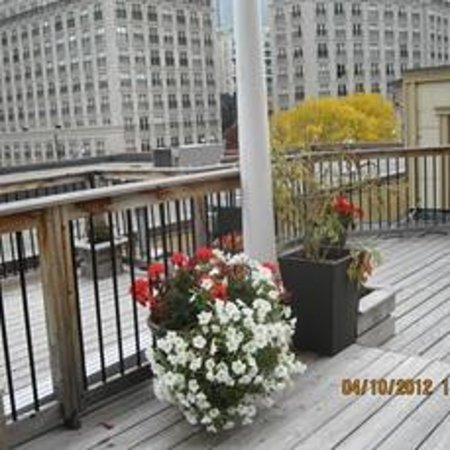 Saint Lawrence Residences & Suites: Roof Garden