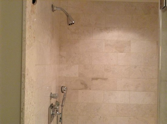 Mandarin Oriental, Atlanta: Luxury everything, but a regular run of the mill hotel showerhead?