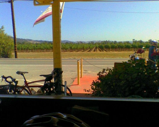Healdsburg, CA: Alexander Valley vineyard view from table at Jimtown
