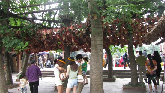 Shuangliu County, China: Wishes tree