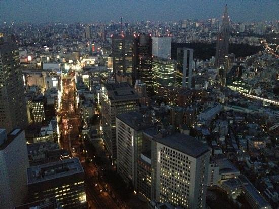 Park Hyatt Tokyo: Shinjuku dusk from 5001.
