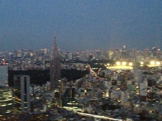 Park Hyatt Tokyo: Add a caption