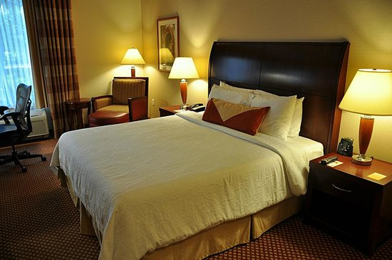 Hilton Garden Inn Sonoma County Airport: Standard King Room