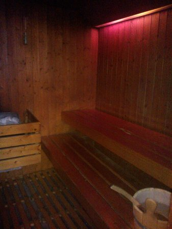 Hotel Bristol Buja: Sauna finlandese