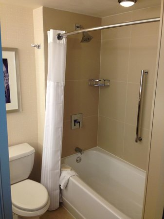 Hilton Times Square: Bathroom in room 4220