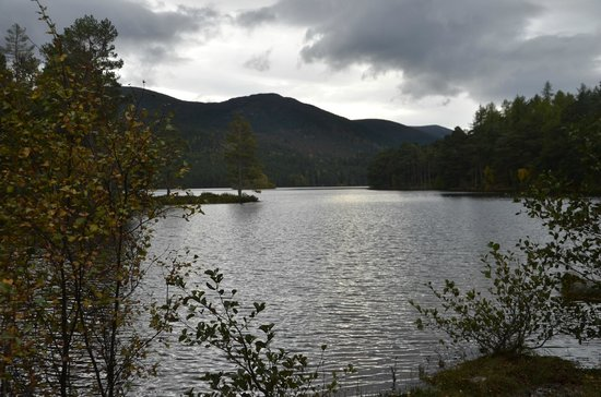 Aviemore, UK: The View- stunning