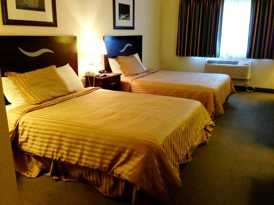Americas Best Value Inn Yosemite-Oakhurst: The beds