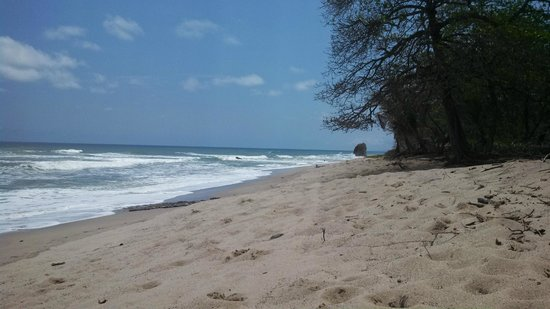 Florblanca Resort: Beach in front of Florblanca
