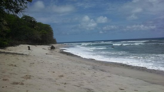 Florblanca Resort: Beach facing toward Santa Teresa in front of Florblanca