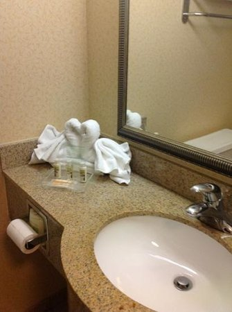 Holiday Inn Nashville-Vanderbilt (Downtown): towel art