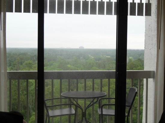"BEST WESTERN Lake Buena Vista Resort Hotel: our ""disney room"" was really just a view of trees and another hotel"