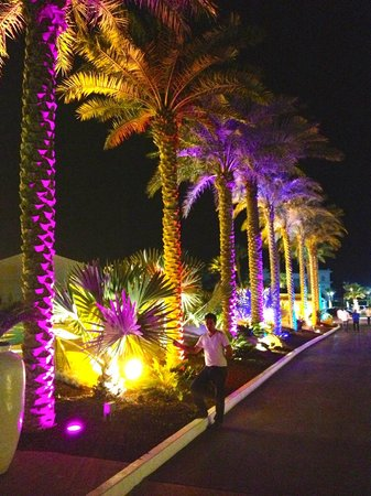 Atlantis, The Palm: les jardins côté mer