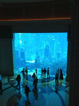 Atlantis, The Palm: le fameux aquarium IMPRESSIONNANT