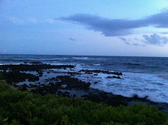 Sheraton Kauai Resort: View of shore from ground level