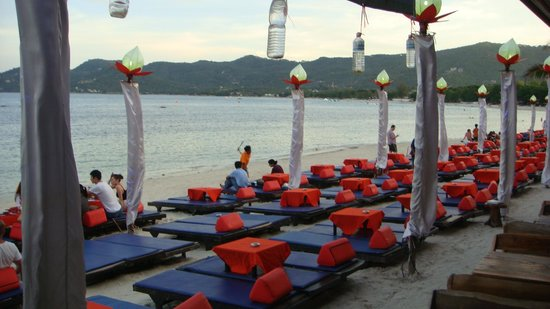 Ark Bar Beach Resort: The beach area / party area