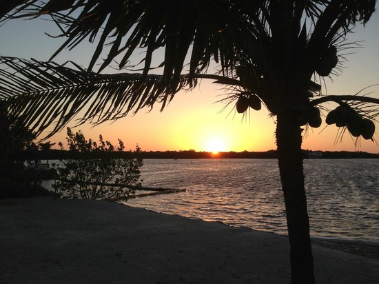 Gulf View Waterfront Resort: The sunset from the hammock