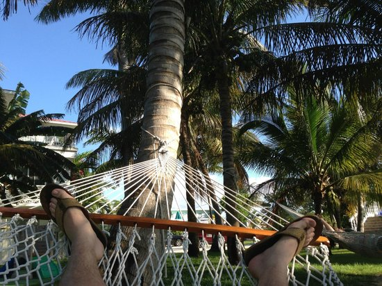 Gulf View Waterfront Resort: The Hammocks
