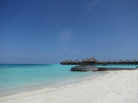 Baros Maldives: Daytime view from loungers of Deluxe Villa 119