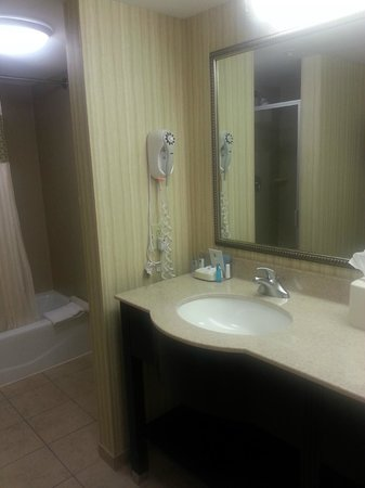 Hampton Inn &amp; Suites Myrtle Beach Oceanfront Resort: Bathroom