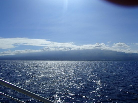 Maalaea, Hawái: One of the views from the boat