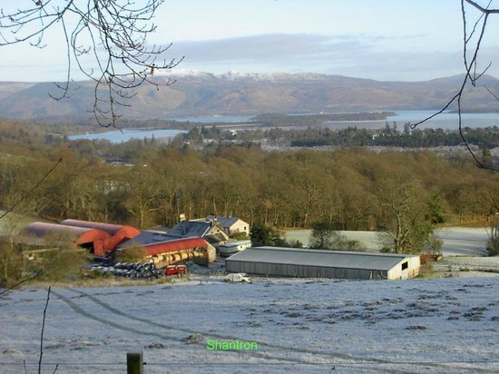 Luss, UK: Shantron Farm overlooking Loch Lomond