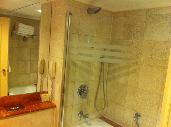 InterContinental David Tel Aviv: Shower