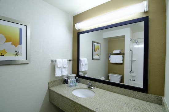 Fairfield Inn &amp; Suites Saratoga - Malta: Guest Bathroom