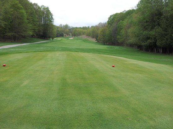 Gaylord, Мичиган: Pro level course conditions!