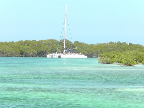 Melia Varadero : Catamaran tour 