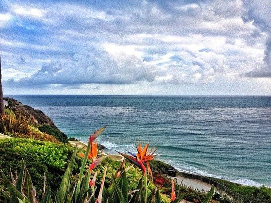 The Ritz-Carlton Laguna Niguel: Sunny colors