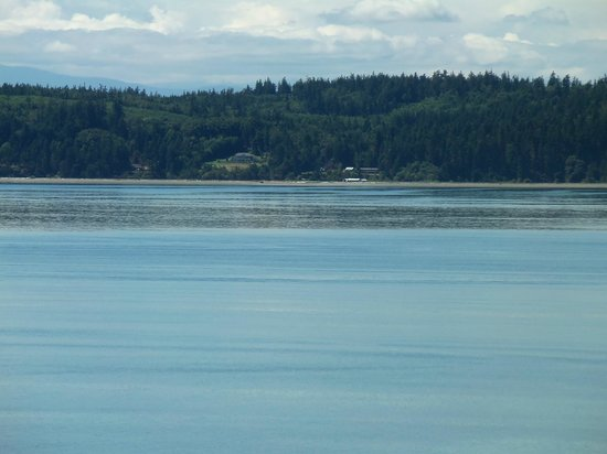 Camano Island, WA: Stunning Views from rooms!