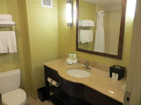 Holiday Inn Express Hotel & Suites Mt Juliet-Nashville Area : Bathroom.