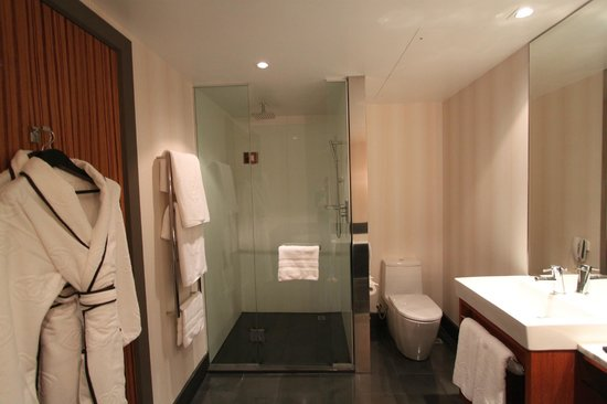 Sofitel Auckland Viaduct Harbour: Bathroom - Awesome Shower!