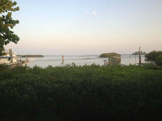 Placida, FL: From the Fishery Restaurant.