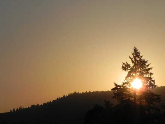 Newberg, OR: Watching the sunrise ... awesome