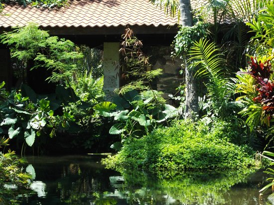 Natura Park Beach - EcoResort & Spa: Grounds with another Pond