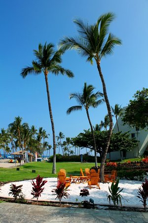 Mauna Lani Bay Hotel & Bungalows: Soft sand pit next to the outdoor bar