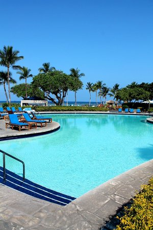 Mauna Lani Bay Hotel & Bungalows: Never went in for a dip, the beach was too good!