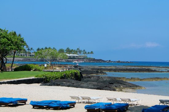 Mauna Lani Bay Hotel & Bungalows: Enjoy a drink and relax in the sun. Don't get up, Terrace Bay serves to these chaise lounges!