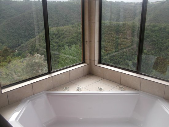 Wilderness, Sydafrika: View from bathroom - wow!
