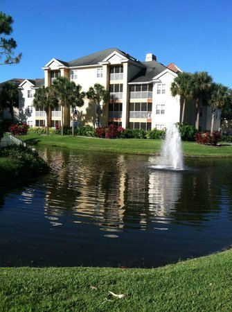 Sheraton Vistana Resort - Lake Buena Vista: beautiful morning!
