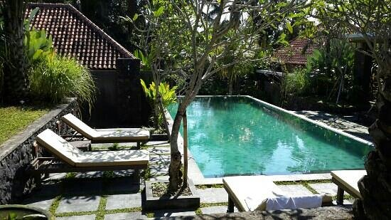 Kori Ubud Resort: The 'almost' private pool right in front of my room. perfect.