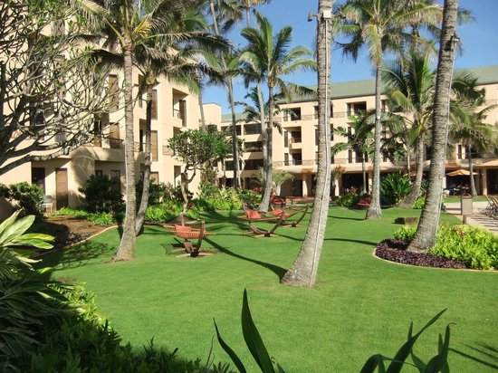 Courtyard by Marriott Kauai at Coconut Beach: Hotel grounds
