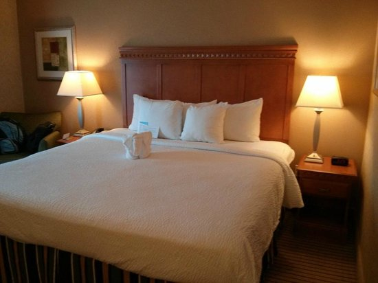 Fairfield Inn & Suites Jacksonville Butler Boulevard: King bed with towel animal